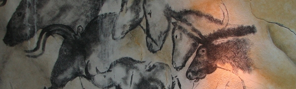 Paintings in Chauvet cave