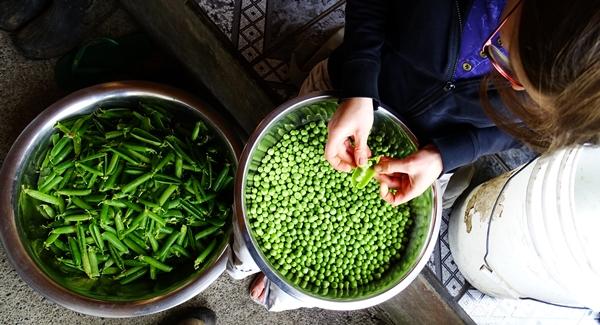 Peeling the peas
