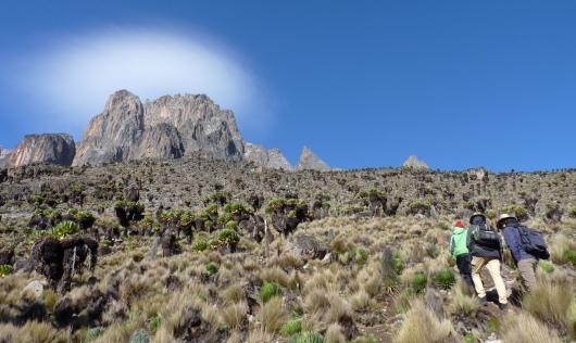 Mt Kenya
