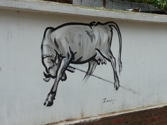 Zainul Rebel Cow
